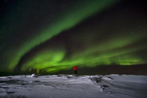Person Watching Aurora Borealis on Iceland by Chad Copeland