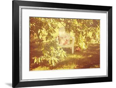 Chair Apples and a Book under a Tree-soupstock-Framed Photographic Print