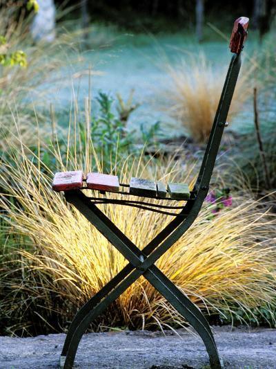 Chair (Bandstand) with Stipa Arundinacea (Pheasant Grass)-Lynn Keddie-Photographic Print