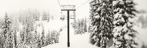 Chair Lift and Snowy Evergreen Trees at Stevens Pass, Washington State, USA