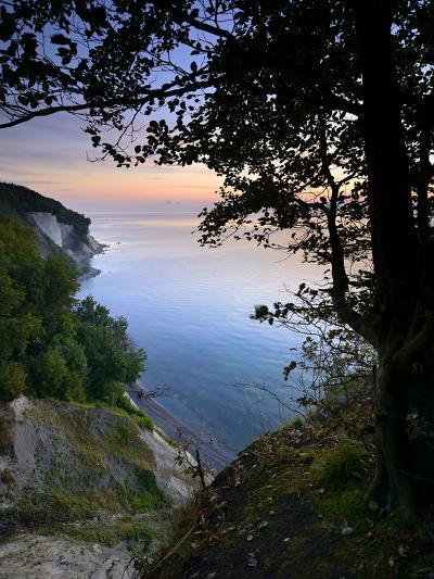 Chalk Rocks, Sunrise, National Park Jasmund, Island RŸgen, Mecklenburg-West Pomerania, Germany-Andreas Vitting-Photographic Print