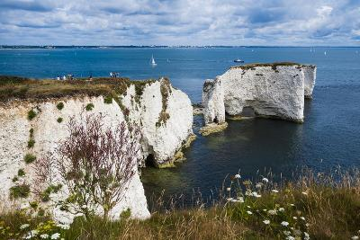 Chalk Stacks and Cliffs at Old Harry Rocks, Between Swanage and Purbeck, Dorset-Matthew Williams-Ellis-Photographic Print