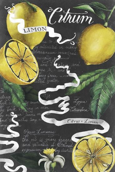 Chalkboard Citrus I-Grace Popp-Art Print