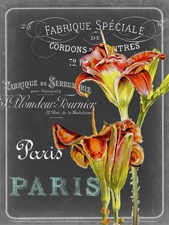 https://imgc.artprintimages.com/img/print/chalkboard-fleurs-ii_u-l-q12zpyj0.jpg?p=0