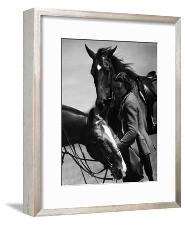 Equestrian Pursuit