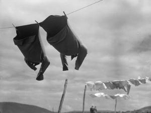 Laundry Day by Chaloner Woods