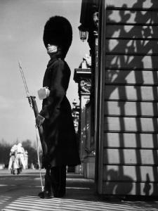 Palace Guard by Chaloner Woods