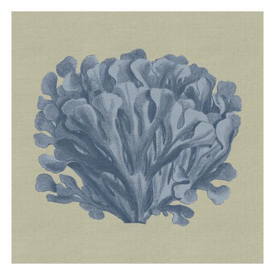 Chambray Coral III-Vision Studio-Art Print