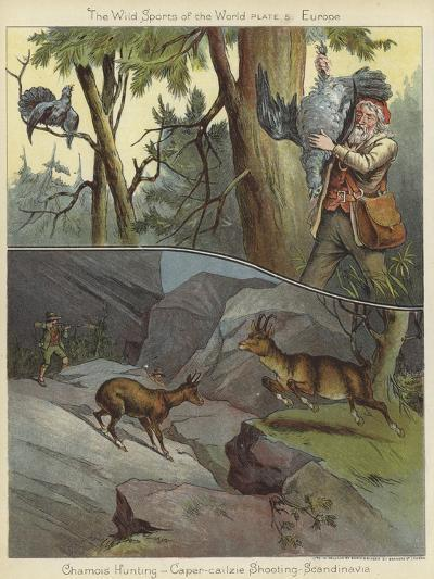 Chamois Hunting and Caper-Cailzie Shooting--Giclee Print