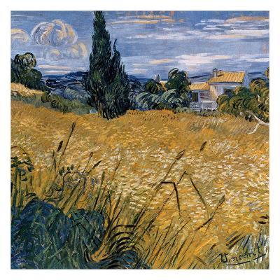 Champ de blé vert avec cypres (Détail)-Vincent van Gogh-Art Print