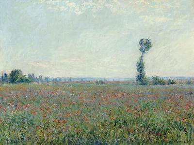 Champ de coquelicots - Poppy Field. 1881-Claude Monet-Giclee Print