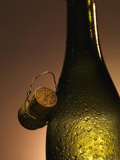 Champagne Bottle with Cork-Joerg Lehmann-Photographic Print