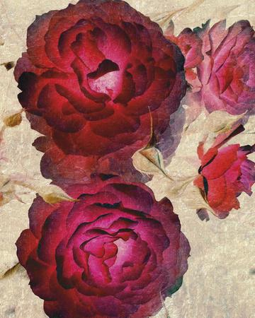 https://imgc.artprintimages.com/img/print/champagne-floral-i_u-l-f8ngwi0.jpg?p=0