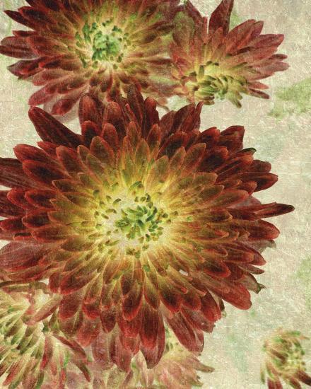 Champagne Floral III-Collezione Botanica-Giclee Print