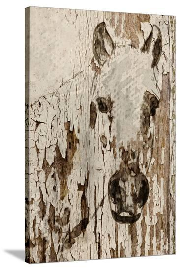 Champagne Horse--Stretched Canvas Print