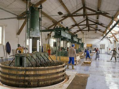 Champagne Wine Presses, Verzy, Champagne Ardennes, France-Michael Busselle-Photographic Print