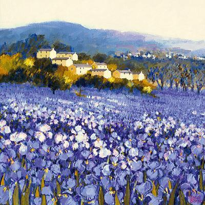 Champs d'Iris, Provence-Hazel Barker-Art Print