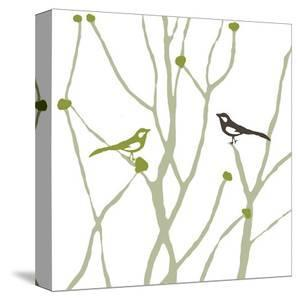 Little Bird by Chantal Poulin