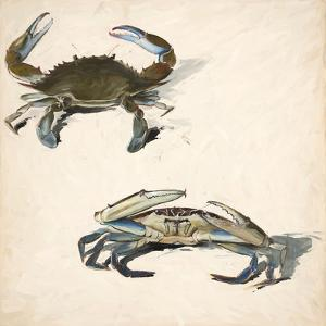 Two Crabs by Chaos & Wonder Design
