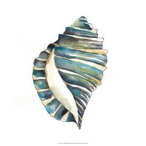 Aquarelle Shells I by Chariklia Zarris
