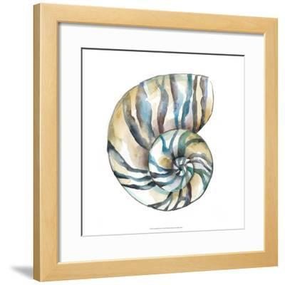 Aquarelle Shells II
