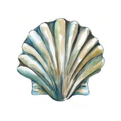 Aquarelle Shells VI