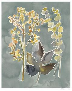 Collected Florals III by Chariklia Zarris