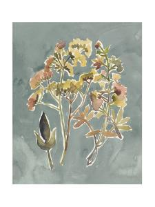 Collected Florals IV by Chariklia Zarris
