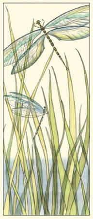 Gossamer Dragonflies I by Chariklia Zarris