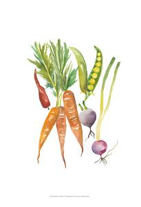 Harvest Medley IV by Chariklia Zarris