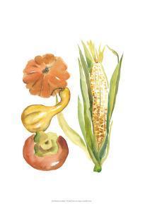 Harvest Medley V by Chariklia Zarris