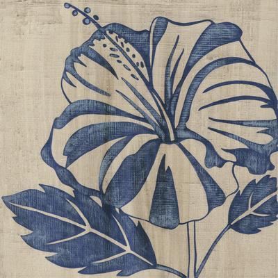 Indigo Hibiscus