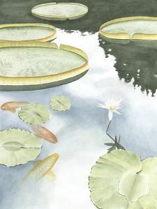 Koi Reflection I by Chariklia Zarris