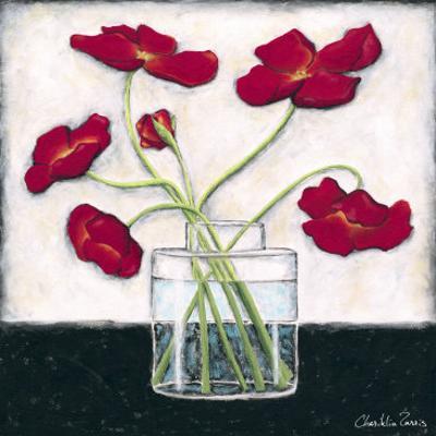 Printed Modern Poppies II by Chariklia Zarris