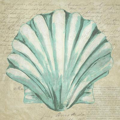 Seafoam Shell II by Chariklia Zarris