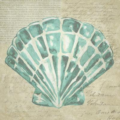 Seafoam Shell III by Chariklia Zarris