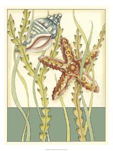 Shell Season I by Chariklia Zarris