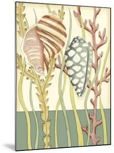 Shell Season II by Chariklia Zarris