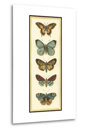 Small Butterfly Collector VI