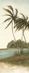Trish's Palms II by Chariklia Zarris