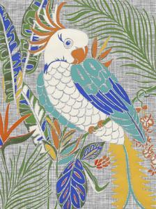 Tropical Cockatoo by Chariklia Zarris