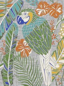 Tropical Macaw by Chariklia Zarris