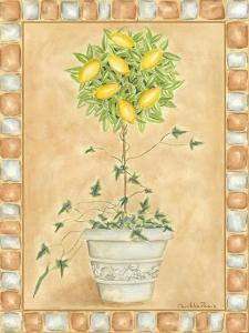 Tuscan Fruit II by Chariklia Zarris