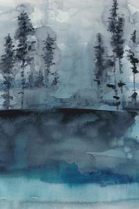 Winter Woods I by Chariklia Zarris