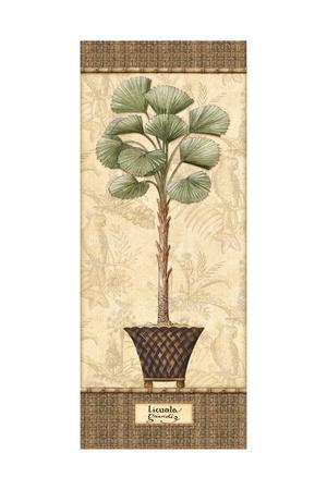 Botanical Palm I