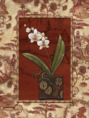 Osaca Floral II