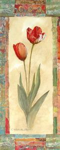 Tulip Montage by Charlene Winter Olson