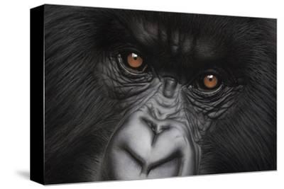 Eyes of Virunga: Mountain Gorilla