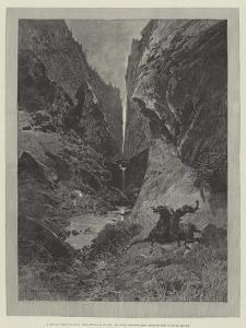 Wild Darrie by Charles Auguste Loye