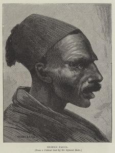Zebehr Pasha by Charles Auguste Loye
